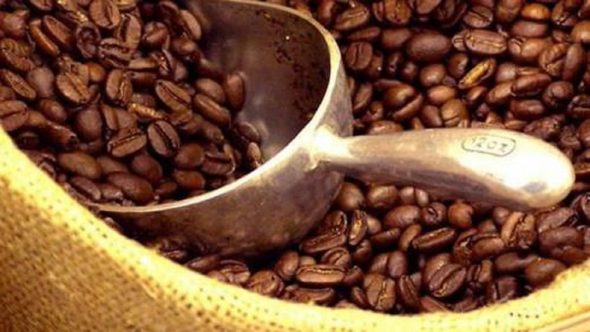 Cameroon Coffee: One Of The Most Charming Coffee in the World