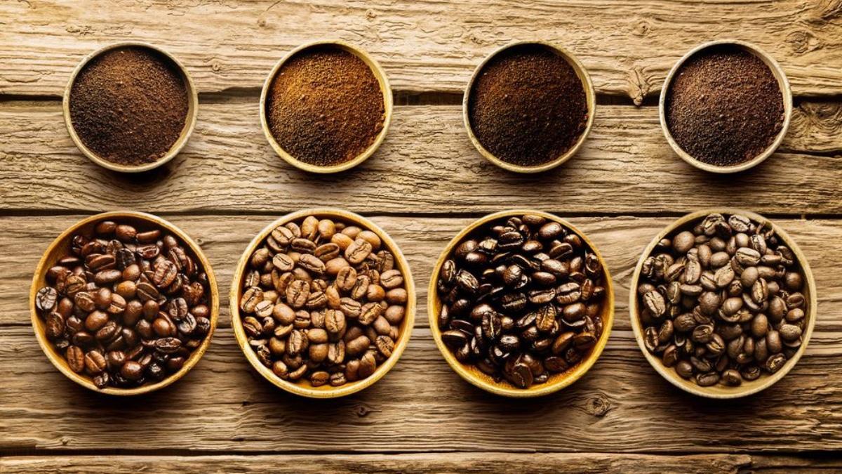4 Best Common Coffee Bean Varieties: Explore Your Options