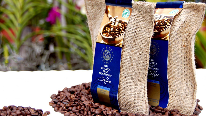 How to Brew Blue Mountain Coffee: Step by Step to Make One of the Best Coffee Cups