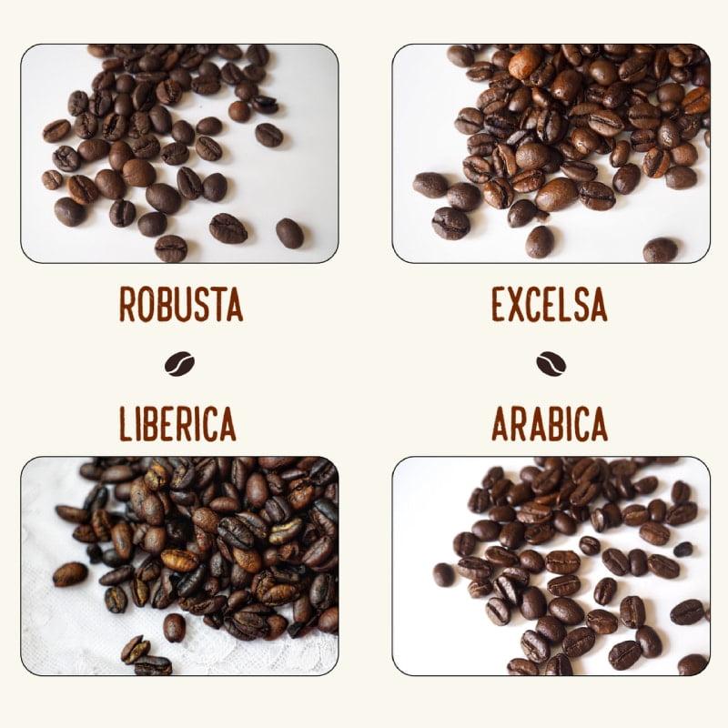 Types of coffee bean